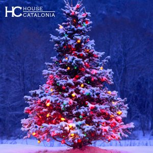 Felices Fiestas House Catalonia
