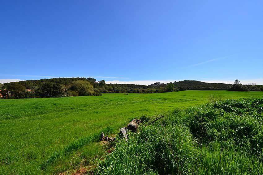 Masia-para-Restaurar-Cerca-de-la-Playa-Campos-Terreno